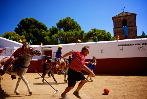 burro-polo-team-building-en-mijas-exploramas-2