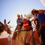 burro-polo-mijas-team-building-exploramas-6