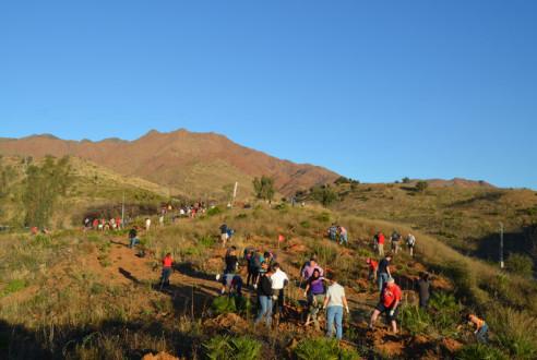 evento-verde-Reforestacion-con-empresas-RSC-exploramas-3